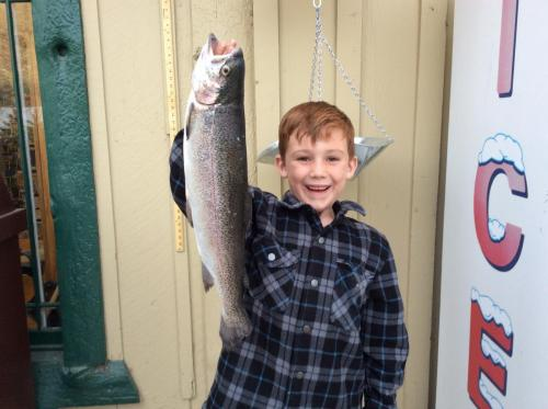 2018-05-06 19.06.53Brayden Chapdelaine from Apple Valley. 3.75 Lb Rainbow on yellow garlic Powerbait. Southshore