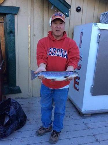 Tom yamada 2.75 conoga park CA, north shore, nightcrawler